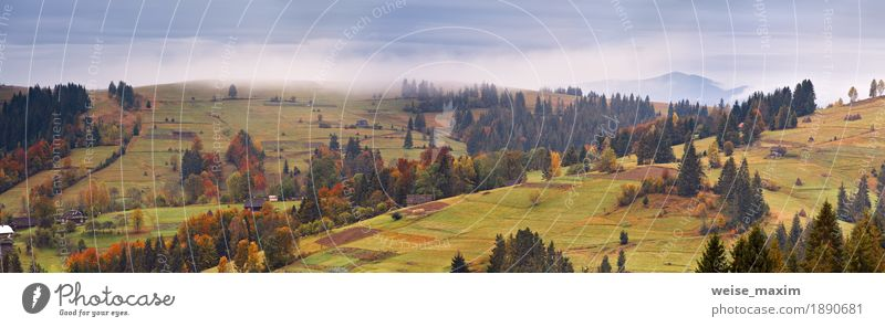 Regnerische Landschaft des Bergdorfes. Bedecktes Herbstpanorama Himmel Natur Ferien & Urlaub & Reisen grün Baum rot Wolken Haus Ferne Berge u. Gebirge gelb