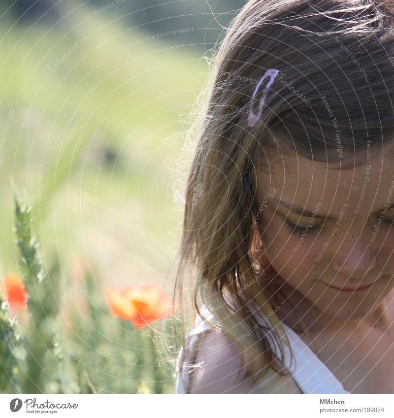 vertieft Mensch Kind Natur Mädchen grün Pflanze rot Sommer Gesicht ruhig Gras träumen Kopf Denken Landschaft Zufriedenheit
