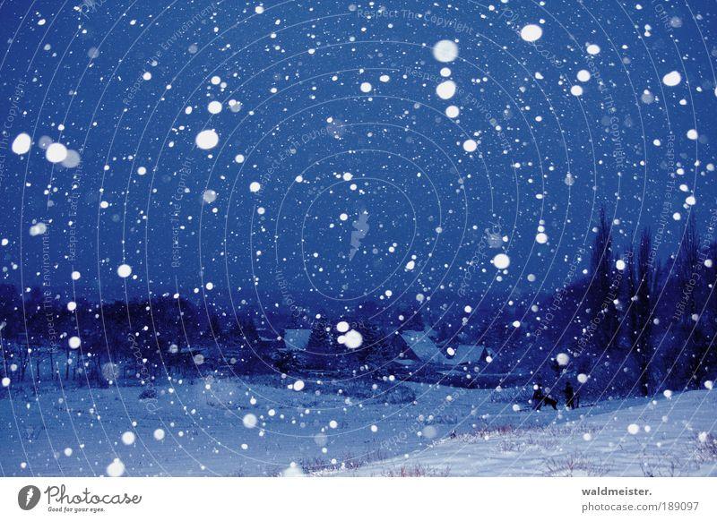 Winterlandschaft Landschaft Eis Frost Schnee Schneefall Baum Dorf Kleinstadt Haus Einfamilienhaus Erholung kalt ruhig Zufriedenheit Lebensfreude Farbfoto
