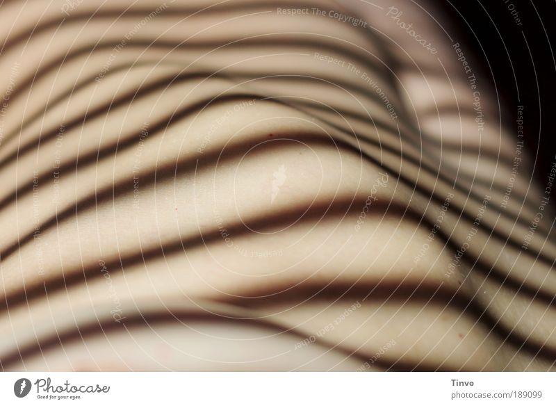 bodyscape feminin Körper Haut 1 Mensch ästhetisch frei nackt dünn schön gestreift Bauchnabel Rippenbogen Nackte Haut Wölbung Farbfoto Innenaufnahme Akt Muster