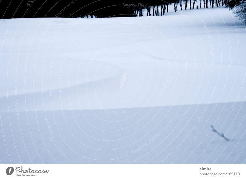 Schneestille Golf Golfplatz Natur Landschaft Winter Park ästhetisch kalt nah weiß Gefühle Stimmung Zufriedenheit Coolness Vorsicht Gelassenheit zurückhalten