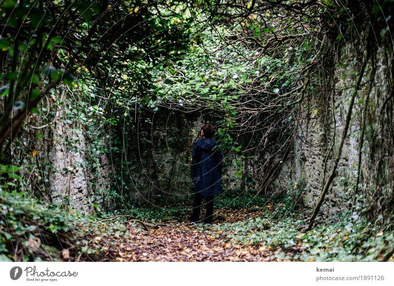 Lady in Black Mensch Frau Natur Pflanze grün Erholung Einsamkeit ruhig dunkel Wald Leben Traurigkeit Senior Lifestyle feminin Freiheit