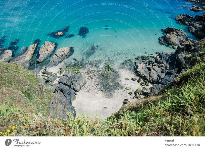 Caribean touch Natur Ferien & Urlaub & Reisen Pflanze blau Sommer schön Wasser Meer Landschaft Strand Umwelt Küste außergewöhnlich Freiheit Stimmung Sand