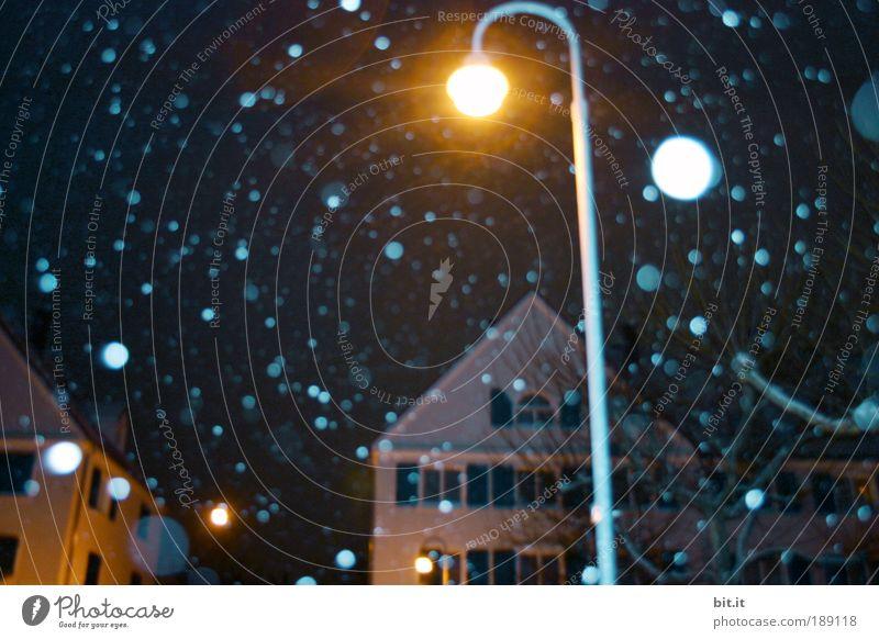 Auf Waldmeisters Spuren Winter Haus Leben Fenster Gefühle träumen Schneefall Stimmung Lampe Feste & Feiern nass glänzend Fassade Energie Elektrizität Hoffnung