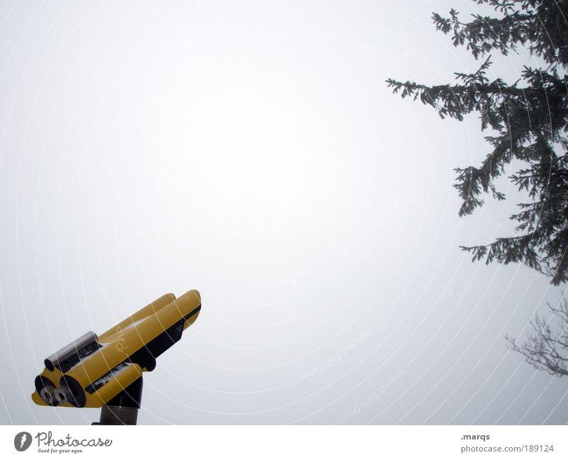 Trübe Aussichten Natur Himmel Baum Winter Ferien & Urlaub & Reisen Ferne kalt Eis Stimmung Nebel Wetter Ausflug Hoffnung Frost Tourismus Aussicht