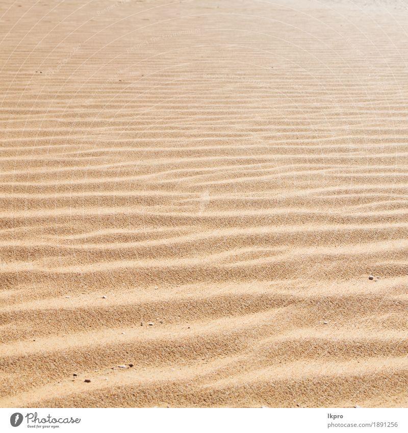 alte Wüste und das leere Viertel Design Sommer Strand Meer Umwelt Natur Erde Sand Klima Wetter Dürre Küste heiß braun gelb grau schwarz weiß Tod trocken