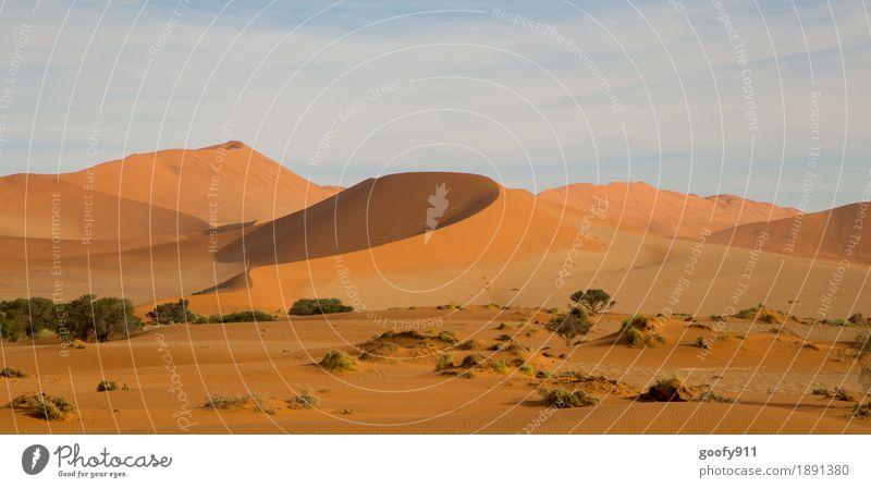 Sossusvlei (Namibia) Umwelt Natur Landschaft Pflanze Tier Urelemente Erde Sand Luft Himmel Wolken Sonne Sonnenlicht Sommer Herbst Schönes Wetter Wärme Dürre