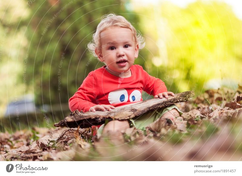 Kind spielt in den Blättern Freude Glück Freizeit & Hobby Spielen Mensch Baby Kleinkind Junge Kindheit Natur Herbst Blatt Park Fröhlichkeit klein niedlich