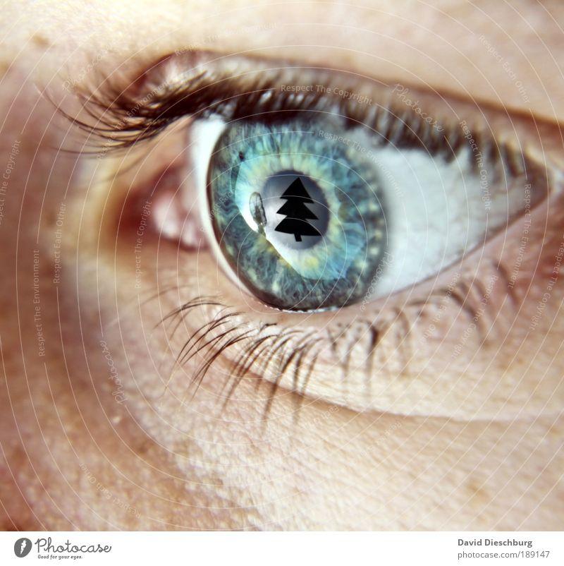 I love christmas Mensch blau Weihnachten & Advent grün weiß Baum Auge Makroaufnahme Unschärfe Haut Kreis Klarheit Falte Weihnachtsbaum Momentaufnahme Tanne
