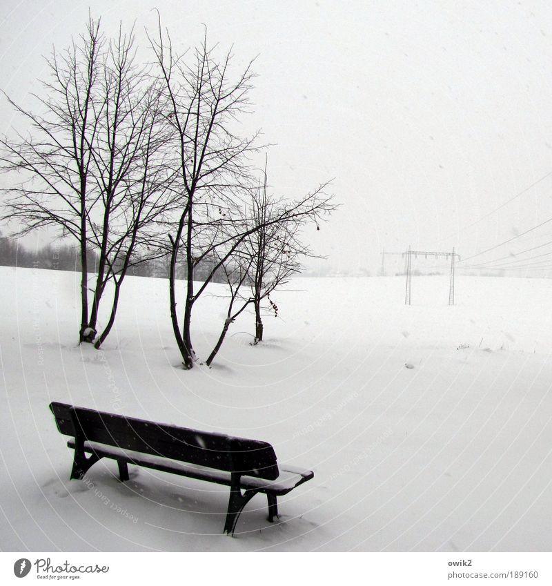 Kühle Aussicht Winter Schnee Technik & Technologie High-Tech Energiewirtschaft Elektrizität Strommast Hochspannungsleitung Umwelt Natur Landschaft Horizont