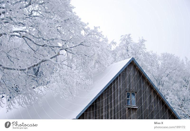 Hütte Ferien & Urlaub & Reisen Ausflug Winter Schnee Winterurlaub Berge u. Gebirge Natur Klima Eis Frost Baum Garten Park Wald Haus alt kalt weiß Raureif