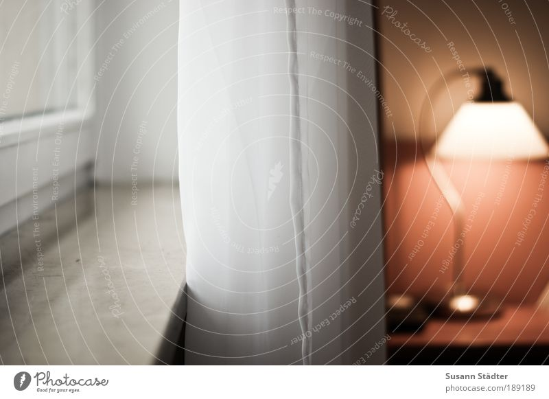 Tageslicht Mauer Wand Fenster leuchten Häusliches Leben Zufriedenheit Geborgenheit Ordnungsliebe Lampe Lampenlicht Nachttisch Gardine Fensterbrett Marmor