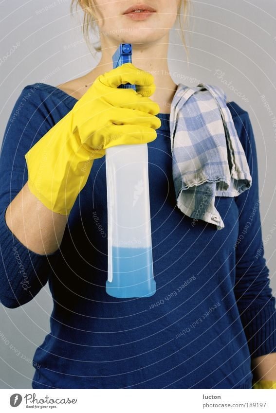 Frühjahrsputz Mensch Frau Jugendliche blau Wasser schön Erwachsene gelb feminin Arbeit & Erwerbstätigkeit Zufriedenheit Raum blond Fröhlichkeit 18-30 Jahre