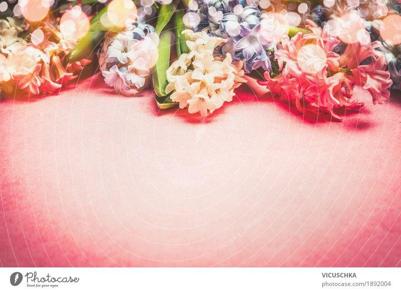 Hyacinths Blumen Natur Pflanze rot Freude Liebe Frühling Stil Feste & Feiern Design rosa Dekoration & Verzierung Geburtstag Postkarte Blumenstrauß Valentinstag