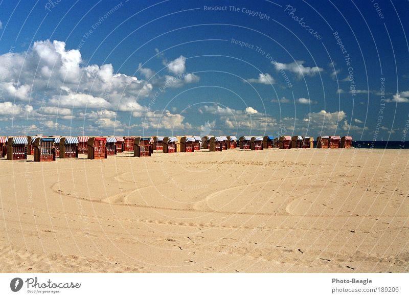 Bereit für den Ansturm II See Meer Strand Sand Strandkorb faulenzen Erholung Ferien & Urlaub & Reisen Ostsee Travemünde Möwe Wellen
