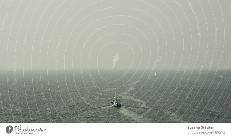 Geburtstagswünsche, bis zum Horizont und noch viel weiter Meer Wasserfahrzeug Küste Wellen Horizont Insel Spuren leuchten Richtung Bucht Verkehrswege Schifffahrt Ostsee Angeln Segelboot Fischer