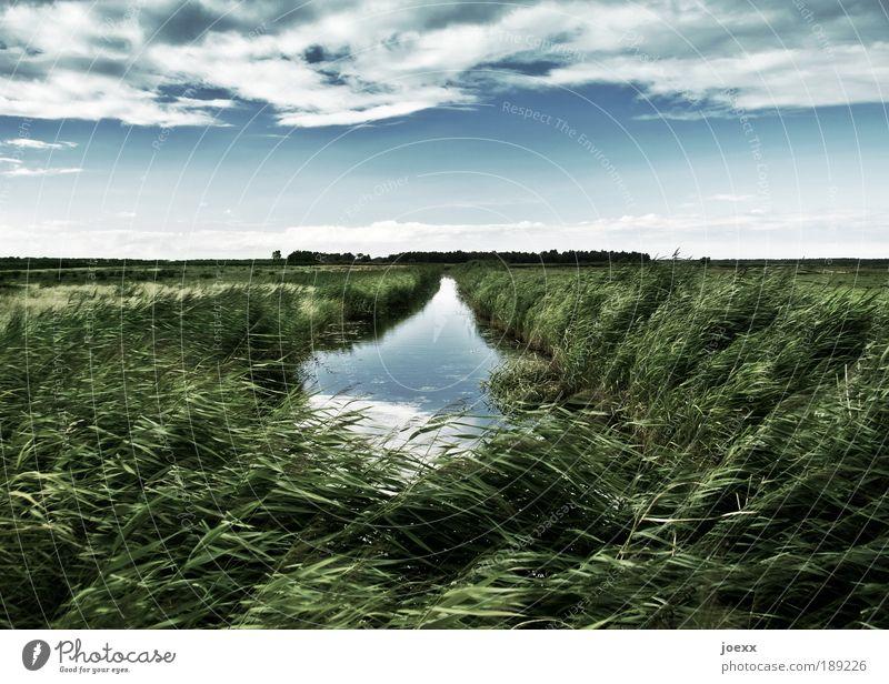 Wasserweg Himmel Natur Pflanze blau grün Wasser Landschaft Wolken Gras Freiheit Horizont Wind Klima Schilfrohr Bach Grünpflanze