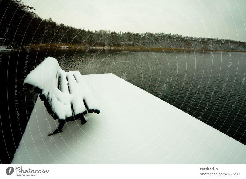 Schnee am See Dezember Schneedecke Neuschnee Bank leer ausdruckslos Menschenleer frei ruhig Wasser Wasseroberfläche Küste Seeufer Wald Steg Anlegestelle trüb