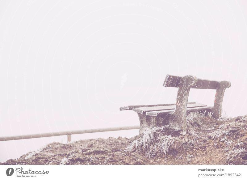 aussichtsbank Natur Pflanze Winter entdecken Expedition