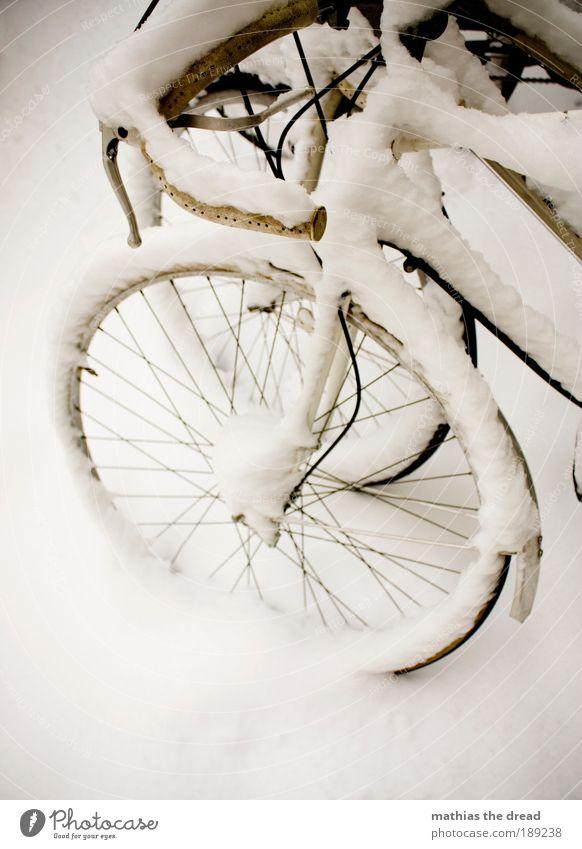 SCHNEERAD Natur Winter Einsamkeit ruhig Umwelt Landschaft Straße kalt Schnee Freiheit Eis Zufriedenheit Fahrrad Klima ästhetisch Frost