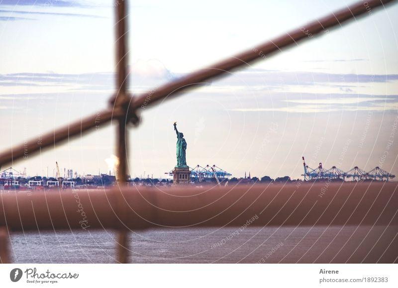 gewisse Einschränkungen New York City USA Hauptstadt Menschenleer Brücke Brückengeländer Sehenswürdigkeit Denkmal Freiheitsstatue Hafen Röhren Bekanntheit braun