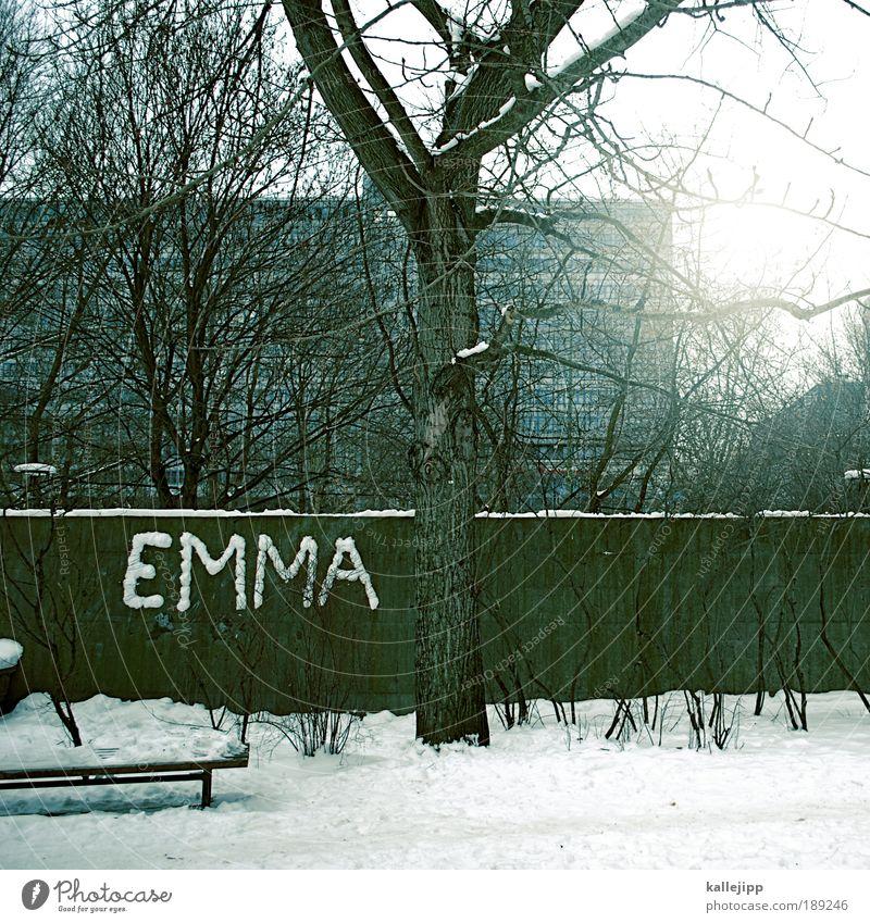 verliebt in berlin Stadt Baum Sonne Winter Haus Fenster Graffiti Schnee Eis Park Fassade Hochhaus Schriftzeichen Lifestyle Sträucher Dach