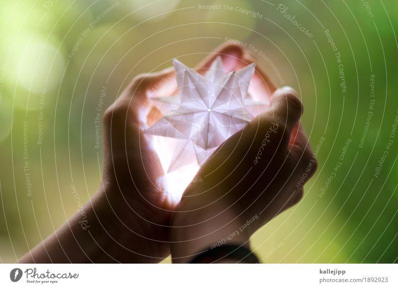 bald Feste & Feiern Weihnachten & Advent Mensch Kind Mädchen Arme Hand Finger 1 13-18 Jahre Jugendliche Veranstaltung leuchten Stern (Symbol)