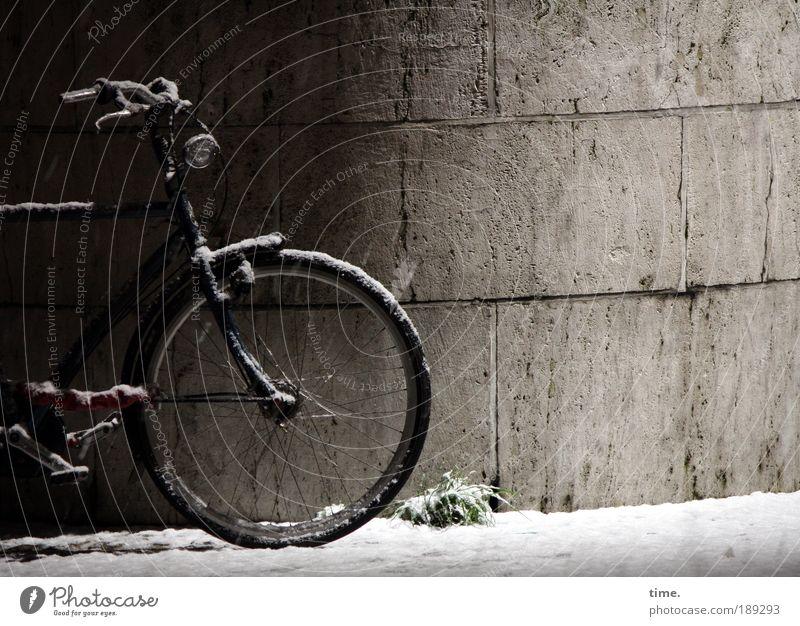 Frostmöhre Winter schwarz kalt Schnee Mauer Fahrrad Metall stehen Metallwaren Rad frieren parken Hälfte Fahrradrahmen