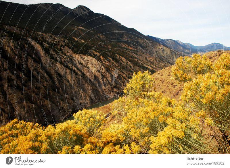 Fraser Canyon Natur schön Blume Pflanze Ferne Herbst Berge u. Gebirge Wärme Landschaft Felsen Sträucher einzigartig gigantisch
