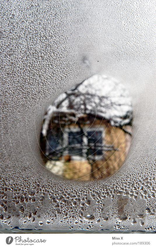 Durchblick, Ausblick ,Lichtblick ... auf die nächsten 600 Wasser alt Winter Haus kalt Herbst Fenster Garten Wärme Eis Wetter Umwelt Wassertropfen nass Frost