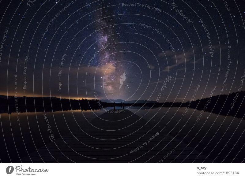 Milky Way Landschaft Wolkenloser Himmel Nachthimmel Stern Sommer Wald Berge u. Gebirge Seeufer Moor Sumpf glänzend leuchten frei hell blau violett Gefühle ruhig