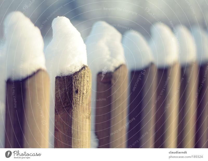 7 Zwerge Winter Schnee Winterurlaub Eis Frost Garten stehen kalt lustig weiß Zaun Holz Holzzaun Holzbrett Mütze Spitze Reihe gerade parallel Märchen Unschärfe