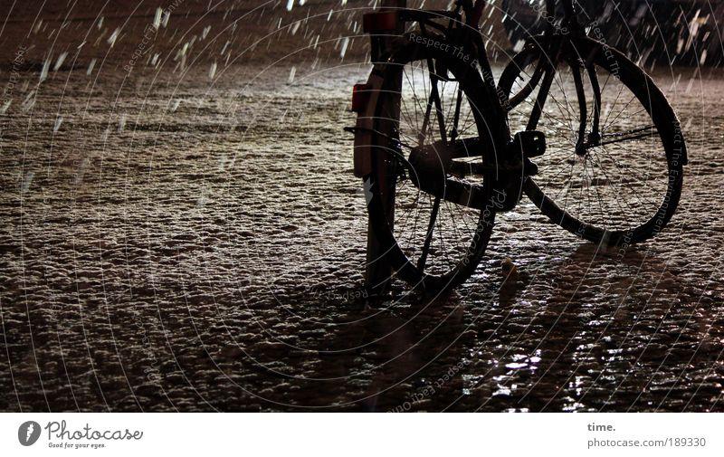 Schneegurke Winter schwarz Straße kalt Schneefall Tanzen Fahrrad nass Frost stehen Rad frieren parken Fahrradrahmen anlehnen