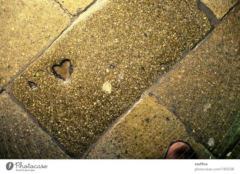 HEART, aber herzlich Fußgänger Wege & Pfade Herz Linie Liebe Kitsch niedlich positiv Gefühle Euphorie Leidenschaft Vertrauen Sicherheit Schutz Geborgenheit