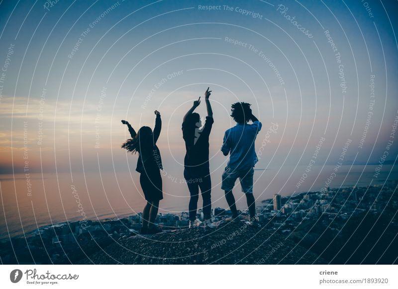 Gruppe multiethnische Freunde, die draußen feiern und tanzen Mensch Jugendliche Sommer Junge Frau Junger Mann Freude 18-30 Jahre Berge u. Gebirge Erwachsene