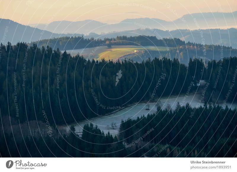 Muldenlage 1 Ferien & Urlaub & Reisen Tourismus Ausflug Berge u. Gebirge wandern Umwelt Natur Landschaft Pflanze Winter Wetter Eis Frost Schnee Baum Tanne Wald