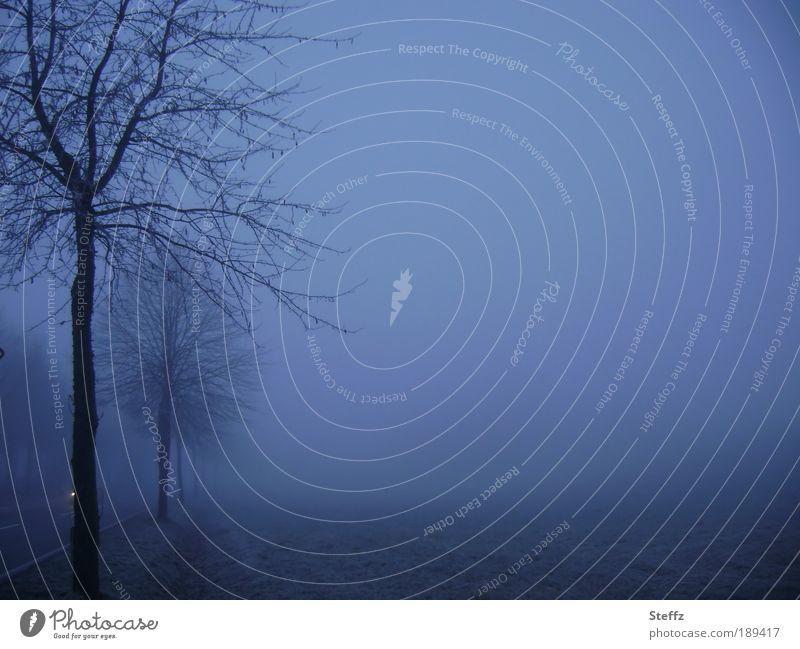 blue hour blues Natur blau Landschaft ruhig Winter dunkel kalt Traurigkeit Straße Schnee Stimmung Nebel Verkehr Romantik Sehnsucht Abenddämmerung