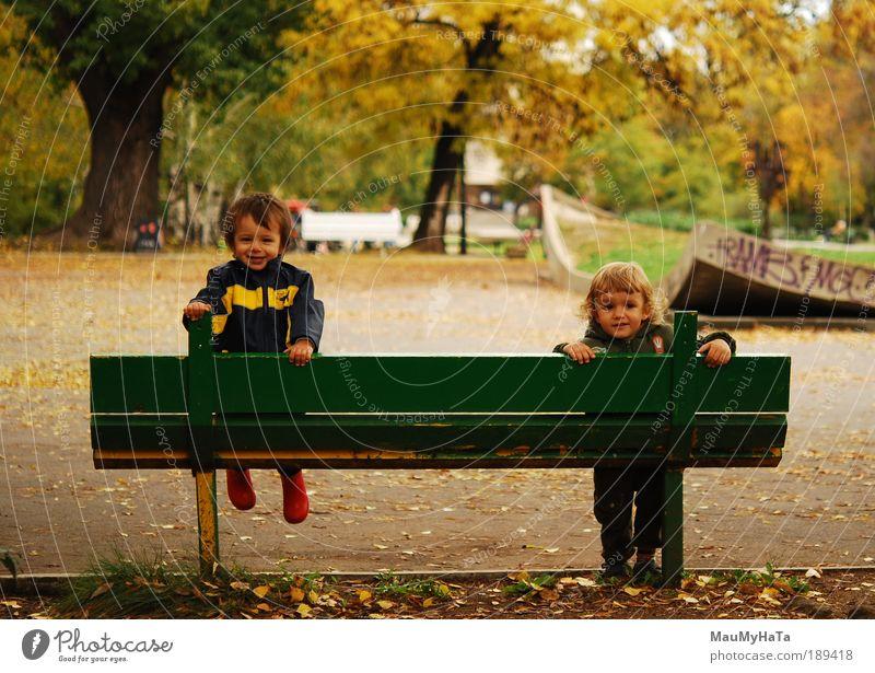 Mensch Kind grün Baum Pflanze rot gelb Herbst Leben Spielen Junge Garten Park Freundschaft Kindheit braun