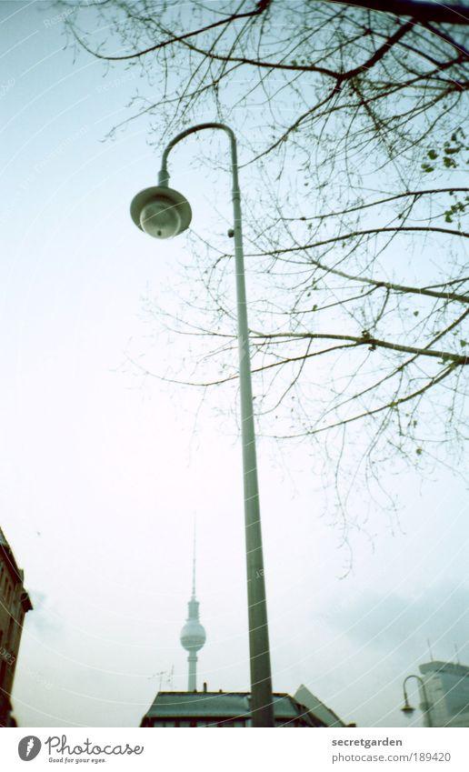 """""""man muss sein wie eine Lampe..... weiß Baum blau kalt Park klein elegant groß Hochhaus Perspektive ästhetisch Dach Berlin Häusliches Leben beobachten analog"""