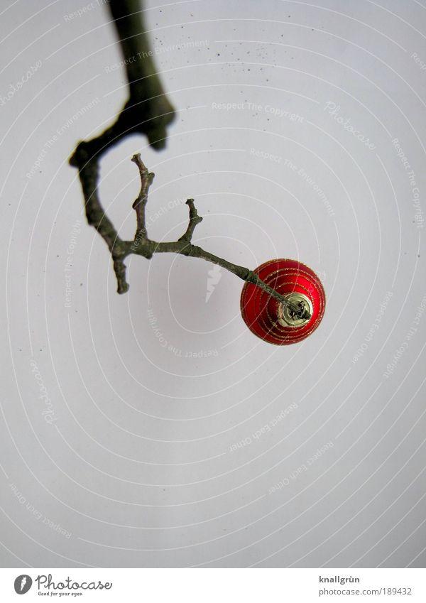 Vorbei! Weihnachten & Advent weiß rot Winter braun Feste & Feiern warten gold Ast Gefühle Christbaumkugel hängen Erwartung Freude Tradition