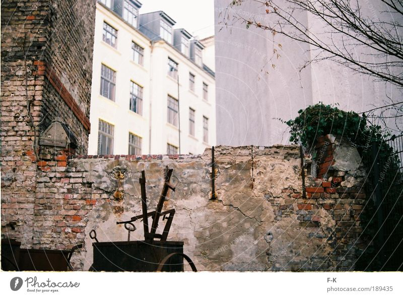 Hinterhof alt grün Stadt ruhig Haus schwarz gelb Wand grau Garten Mauer Gebäude braun dreckig Fassade kaputt