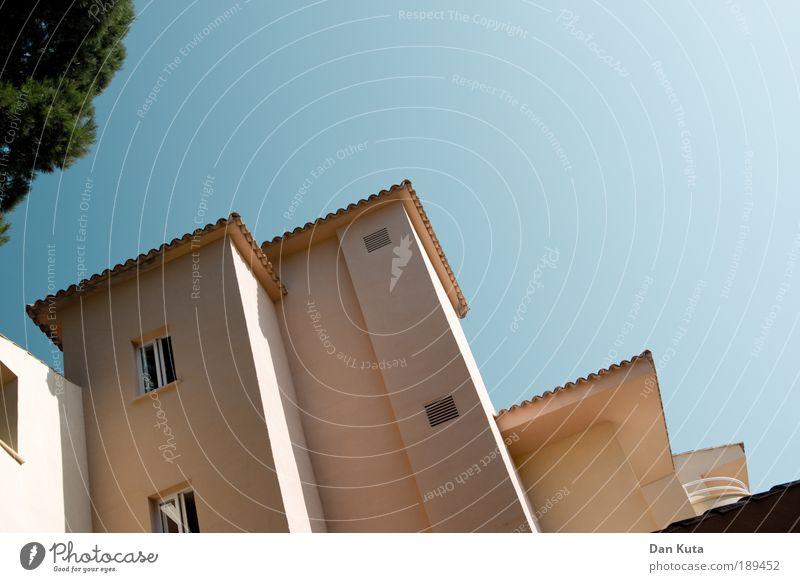 In sonniger Lage Baum Sonne Pflanze Sommer Ferien & Urlaub & Reisen Erholung Wärme Hotel genießen Spanien Mallorca Sommerurlaub Wolkenloser Himmel Pinie Ferienanlage Cala Ratjada