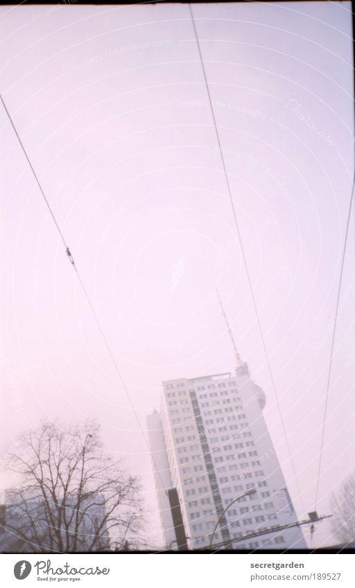 rosa brillen-versteckspiel. Baum Winter Herbst Architektur Gebäude Linie Zufriedenheit rosa Wohnung Hochhaus Kitsch analog Wahrzeichen Schönes Wetter verstecken