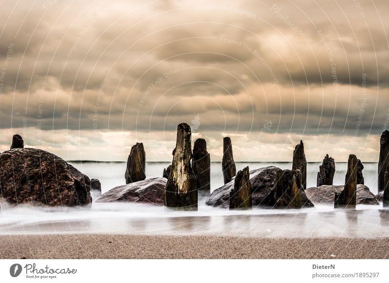 Im letzten Licht Umwelt Natur Landschaft Sand Wasser Himmel Wolken Sonnenaufgang Sonnenuntergang Wetter Wind Wellen Küste Strand Ostsee Meer alt braun orange
