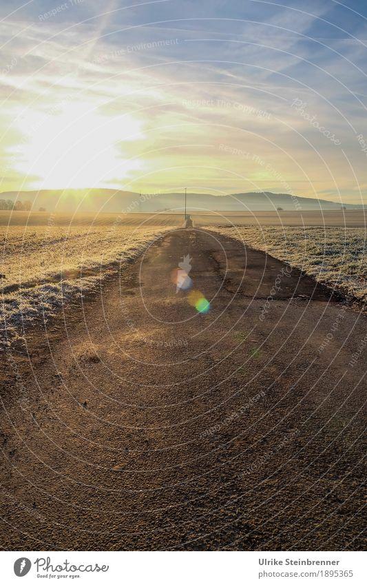 Morgens auf dem Feldweg Sonnenbad Winter wandern Natur Landschaft Pflanze Himmel Wolken Horizont Schönes Wetter Eis Frost Gras Hügel Sulz-Holzhausen Straße