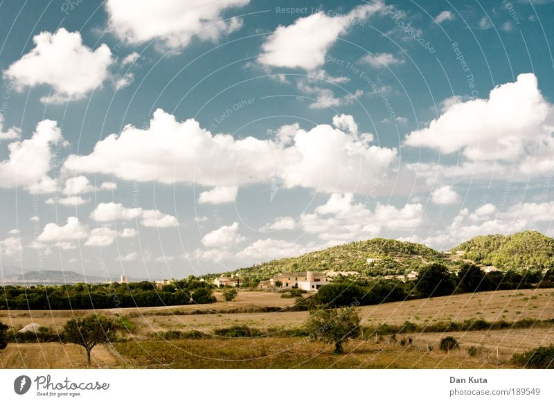 Toskana? (Made in Spain) Natur Spanien schön Himmel Sonne Sommer Ferien & Urlaub & Reisen Wolken Wiese Freiheit Wärme Landschaft Feld Fröhlichkeit Insel
