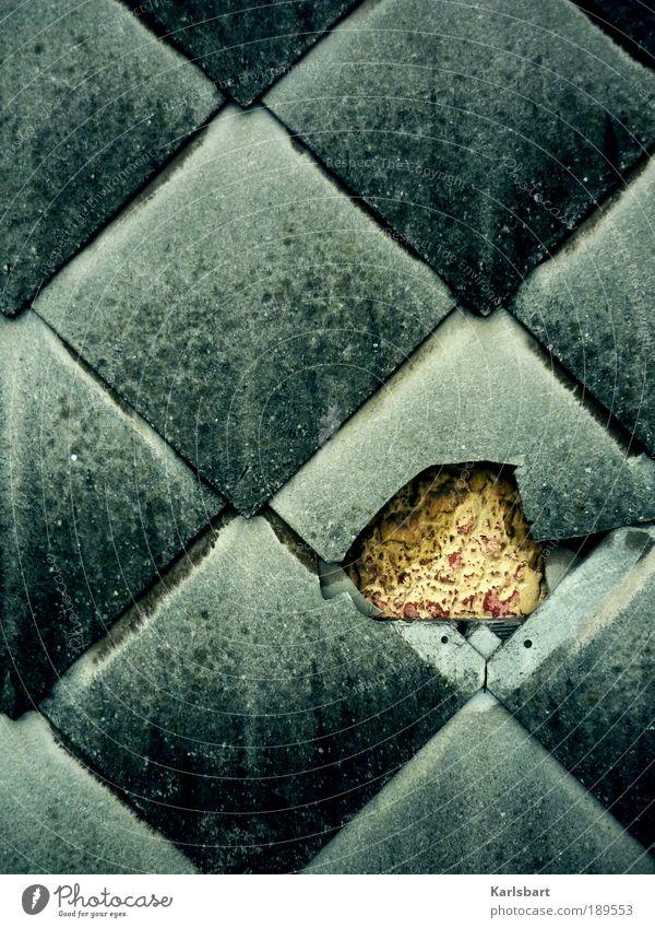aeternitas. Design Häusliches Leben Haus Hausbau Renovieren Arbeit & Erwerbstätigkeit Beruf Handwerker Arbeitsplatz Baustelle Mauer Wand Fassade alt dunkel grau