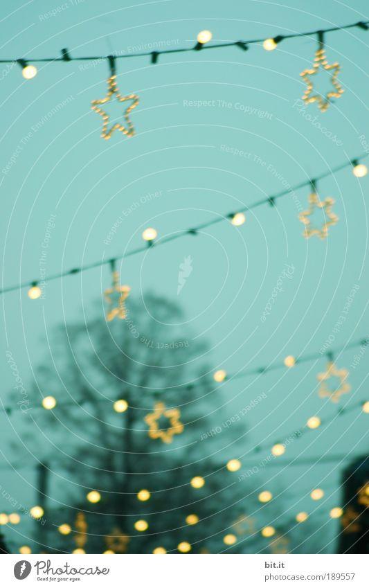 ALLE JAHRE WIEDER Weihnachten & Advent Himmel Winter Lampe Stimmung Beleuchtung Feste & Feiern glänzend Stern Energie Stern (Symbol) Dekoration & Verzierung Dorf leuchten Reihe