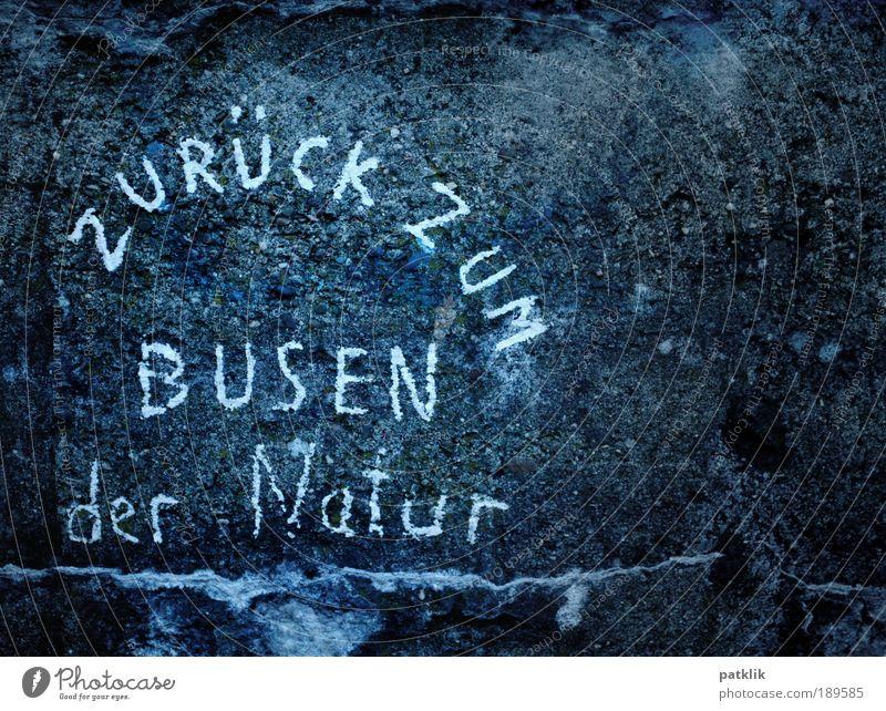 Back to the boobs Natur Freude Stein Felsen Frauenbrust Schriftzeichen einfach einzigartig natürlich Buchstaben Mensch Furche Interesse Brust Bogen poetisch