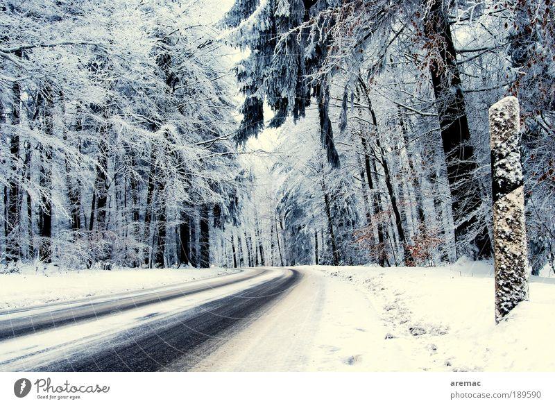Winterreifen-Teststrecke Natur Landschaft Pflanze Wetter schlechtes Wetter Eis Frost Schnee Baum Wald Verkehrswege Straßenverkehr Autofahren kalt blau weiß